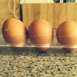 Pasture Reared Eggs